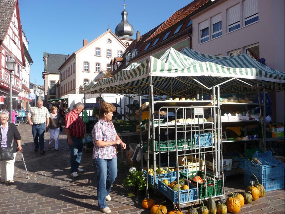 Bild: Grüner Markt