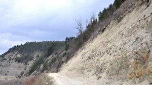 """Wertvolle Blaugrashalden im Naturschutzgebiet """"Kallmuth"""""""